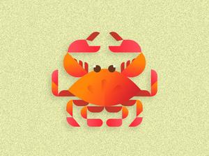 Geometric Crab Illustration Sketch Resource