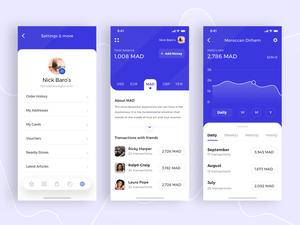 Concept Financial App Sketch Resource