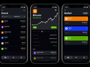 Crypto Currency App Sketch Resource