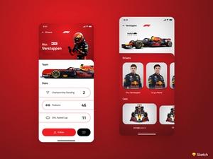 F1ドライバプロファイル画面
