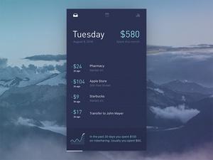 Finance Manager App Concept