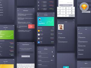Crypto Wallet Concept App Sketch Resource