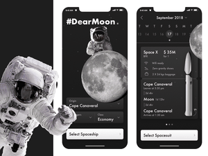 Space Travel App Concept Sketch Resource