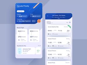 Flight App Concept Sketch Resource