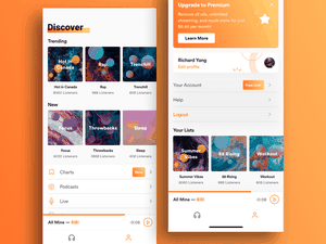 Music Streaming App Concept Sketch Resource