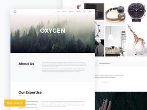 Oxygen – Starter UI Kit